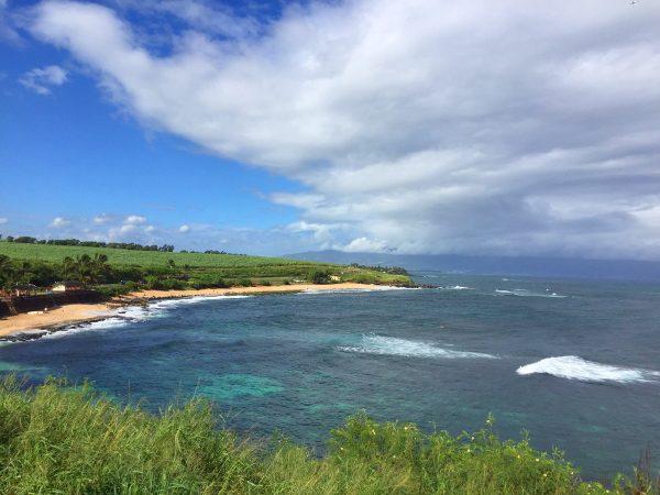 Maui's famous road to Hana