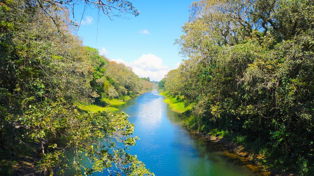 River next to Lago Yojoa