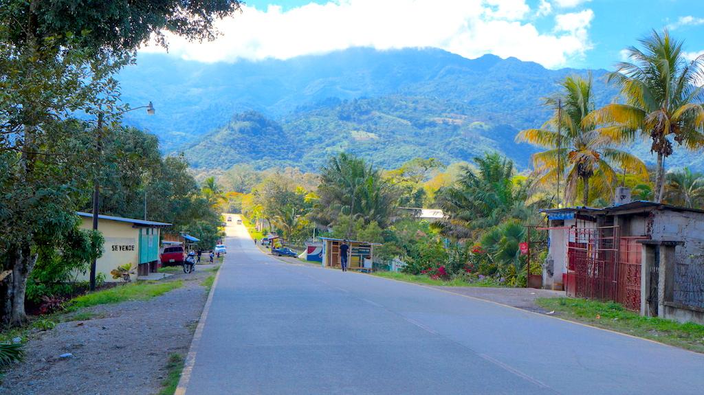 The main street of 'Los Naranjos'