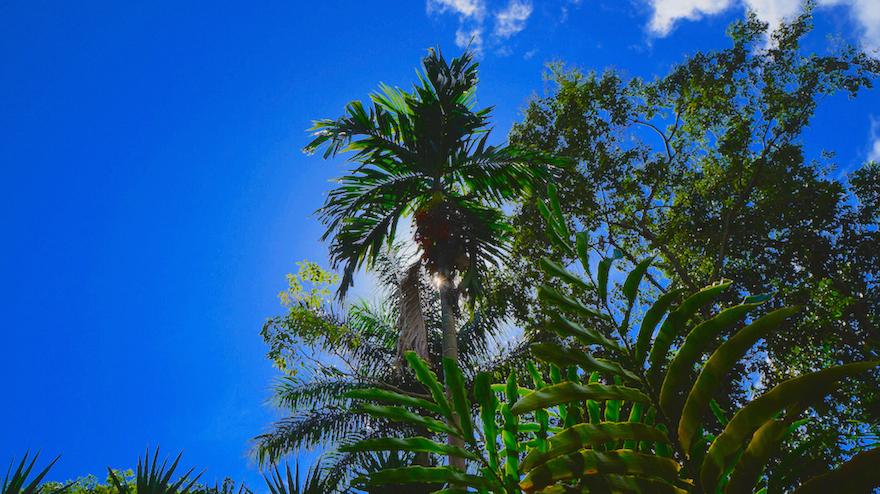 Beautiful Honduras