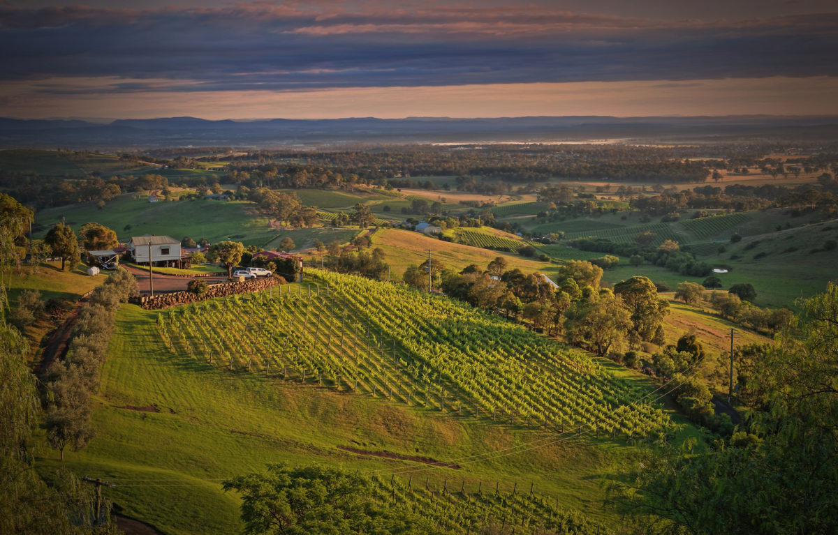 A view onto Hunter Valley, NSW, Australia